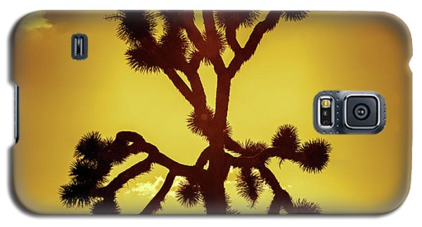 Galaxy S5 Case featuring the photograph Joshua Tree by Stephen Stookey