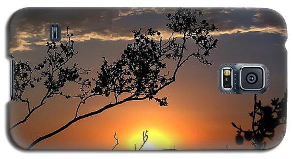 Joshua Tree Sunset Galaxy S5 Case by Chris Tarpening