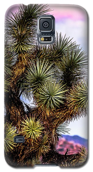 Joshua Tree Sunset Galaxy S5 Case