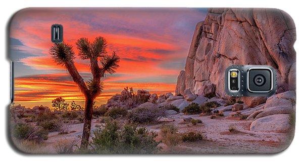 Joshua Tree Sunset Galaxy S5 Case