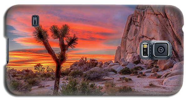 Landscapes Galaxy S5 Case - Joshua Tree Sunset by Peter Tellone