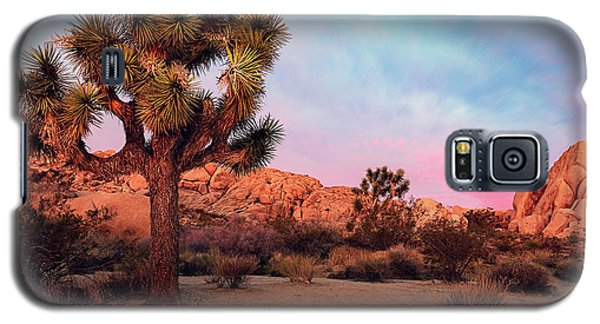 Joshua Tree With Dawn's Early Light Galaxy S5 Case