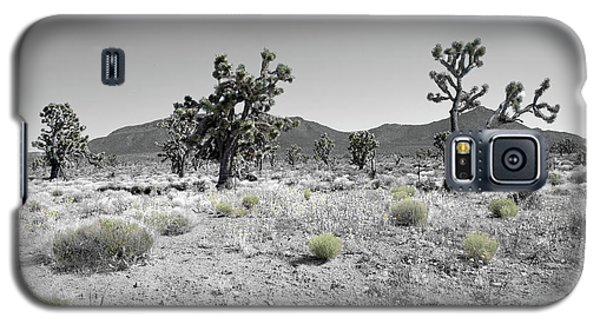 Joshua Trees Galaxy S5 Case by Blake Yeager
