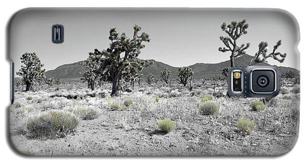 Joshua Trees Galaxy S5 Case