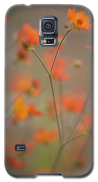 Joy Dance Galaxy S5 Case