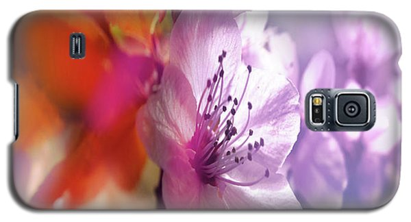 Juego Floral Galaxy S5 Case