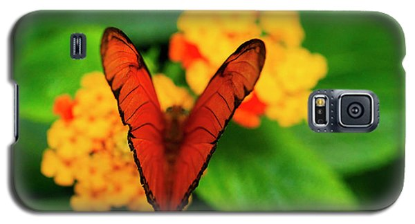 Galaxy S5 Case featuring the photograph Julia Butterfly, Dryas Iulia by Ralph A Ledergerber-Photography