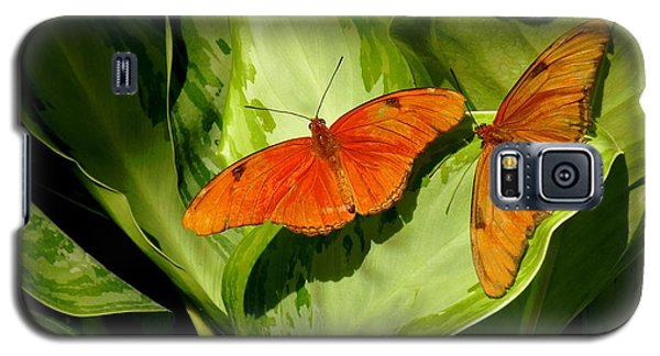 Galaxy S5 Case featuring the photograph Julia Butterfly Pair by Rosalie Scanlon