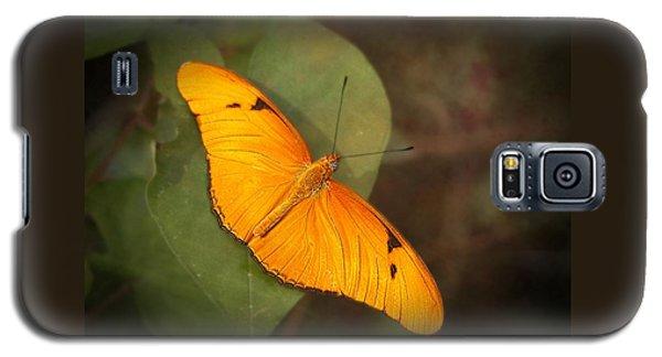 Julia Dryas Butterfly-2 Galaxy S5 Case