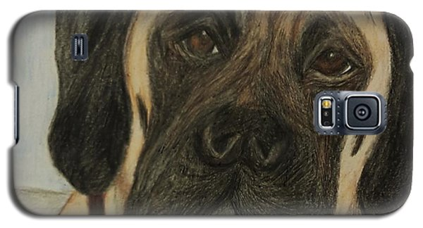 Julie's Dog Lounging Galaxy S5 Case by Christy Saunders Church