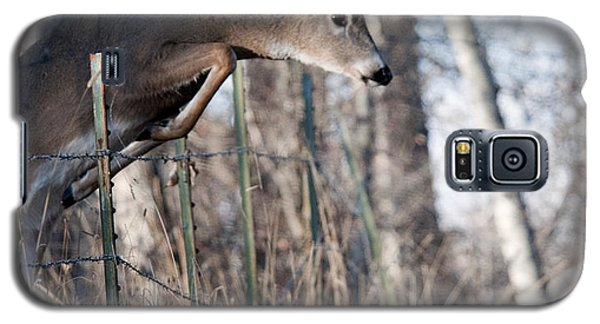 Jumping White-tail Buck Galaxy S5 Case