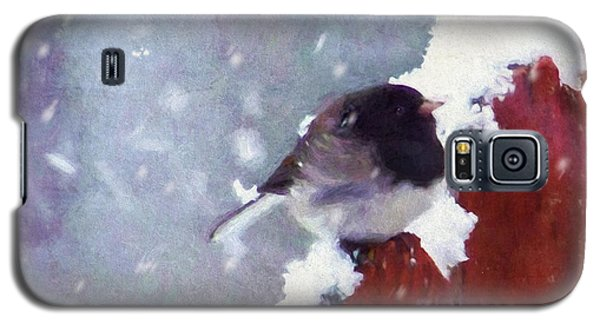 Galaxy S5 Case featuring the digital art Junco In The Snow, Square by Christina Lihani