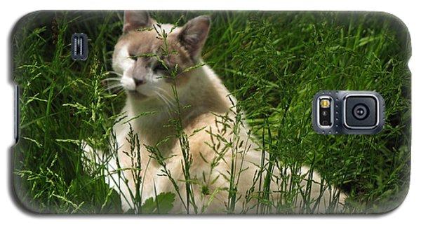 Jungle Cat Galaxy S5 Case