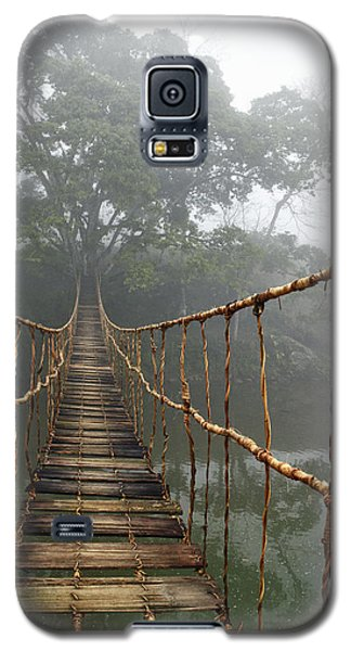 Architecture Galaxy S5 Case - Jungle Journey 2 by Skip Nall