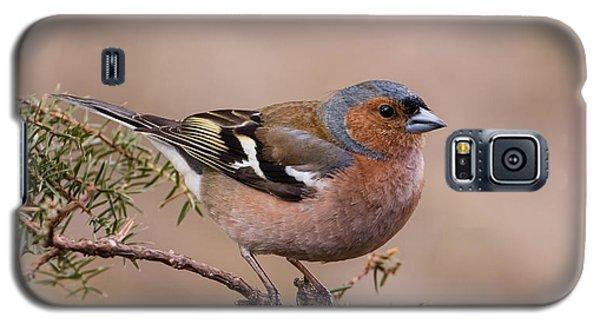 Juniper Bird Galaxy S5 Case