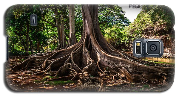 Jurassic Park Tree Galaxy S5 Case
