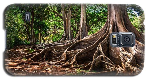 Jurassic Park Tree Group Galaxy S5 Case