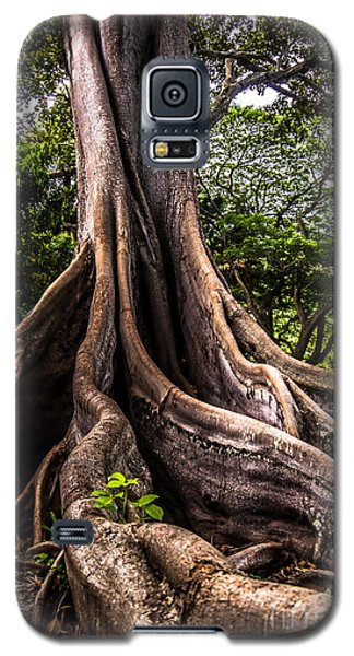 Jurassic Park Tree Roots Galaxy S5 Case