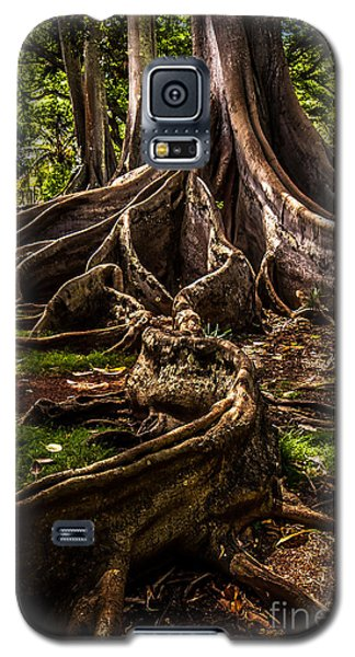 Jurassic Park Tree Trailing Root Galaxy S5 Case