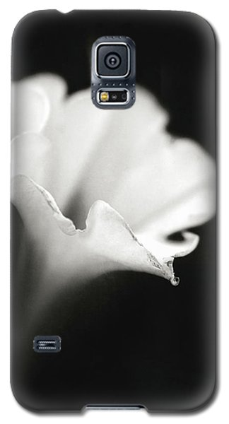 Galaxy S5 Case featuring the photograph Just A White Flower by Eduard Moldoveanu