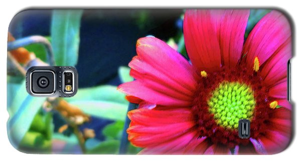 Just Brilliant Galaxy S5 Case