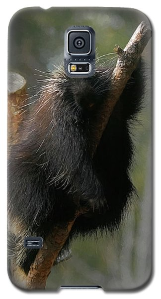 Just Chillin Galaxy S5 Case by Ernie Echols
