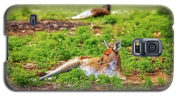 Just Chillin, Yanchep National Park Galaxy S5 Case by Dave Catley
