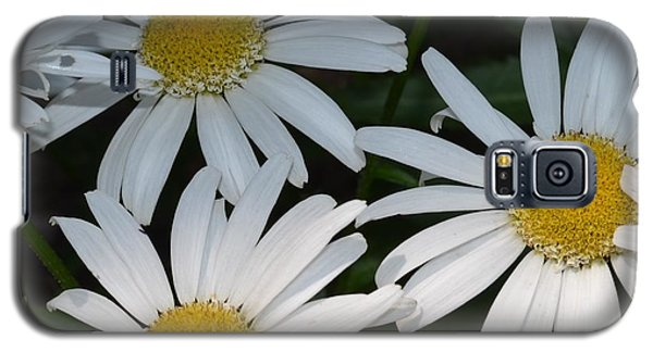 Just Daises Galaxy S5 Case