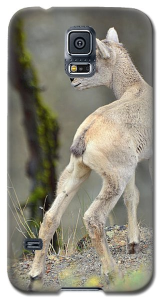 Galaxy S5 Case featuring the photograph Just Kidding Around by Bruce Gourley