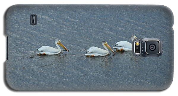Triple Pelicans Lake John Swa Co Galaxy S5 Case