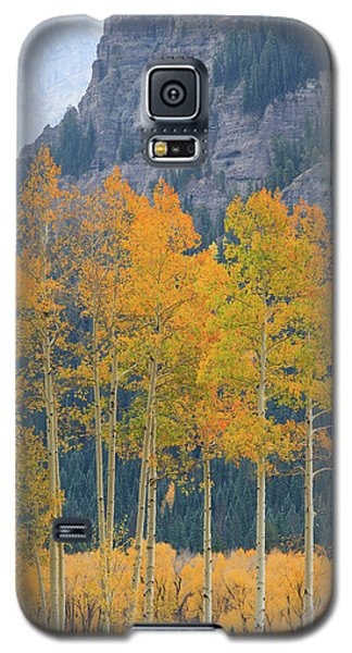 Galaxy S5 Case featuring the photograph Just The Ten Of Us by David Chandler