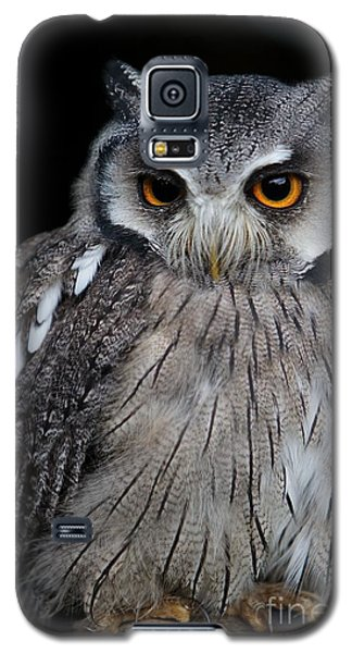 Galaxy S5 Case featuring the photograph Just Waiting by Gary Bridger