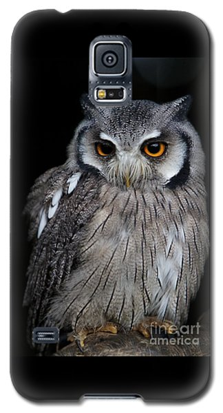 Just Waiting Galaxy S5 Case by Gary Bridger