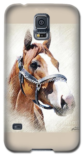 Justify Galaxy S5 Case