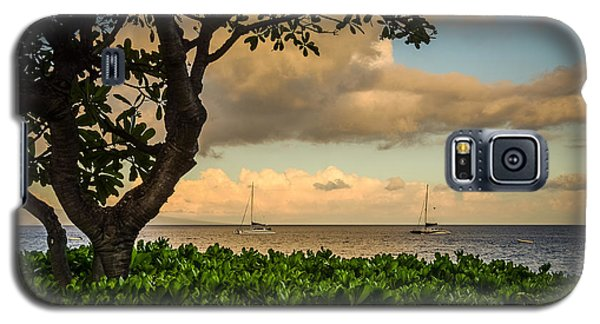 Galaxy S5 Case featuring the photograph Ka'anapali Plumeria Tree by Kelly Wade