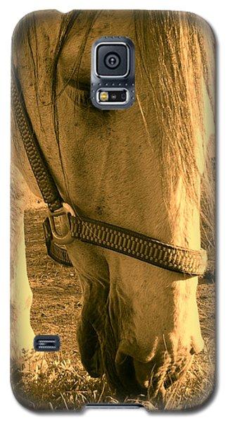 Galaxy S5 Case - Kahn I by Orphelia Aristal