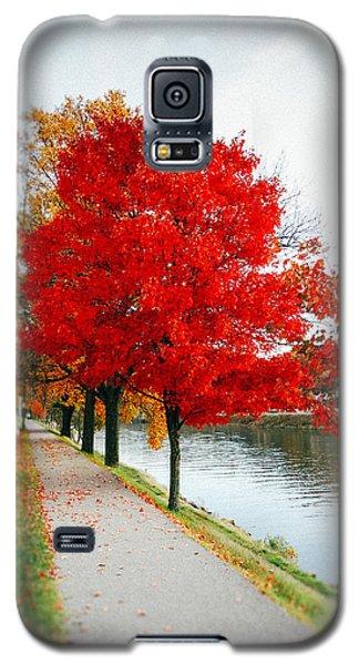 Kanawha Boulevard In Autumn Galaxy S5 Case by Shane Holsclaw