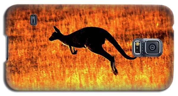 Kangaroo Sunset Galaxy S5 Case by Bruce J Robinson