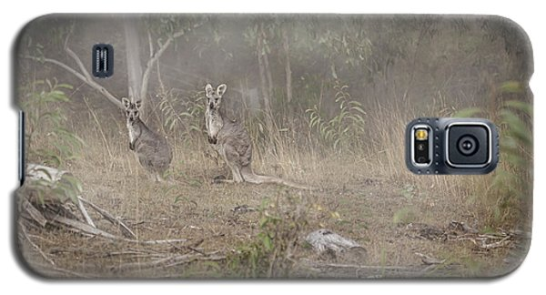 Kangaroos In The Mist Galaxy S5 Case