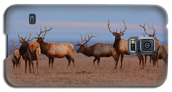 Kansas Elk Panarama Galaxy S5 Case