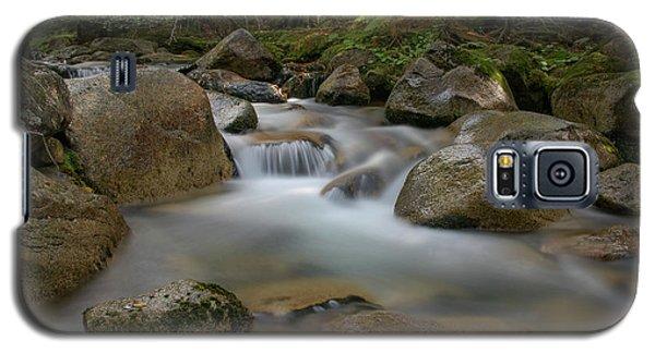 Katahdin Stream Cascades Galaxy S5 Case