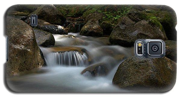 Katahdin Stream In The Shade Galaxy S5 Case