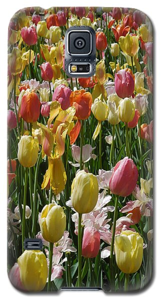 Galaxy S5 Case featuring the photograph Kathy's Tulips Iv by Peg Toliver