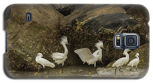 Galaxy S5 Case featuring the photograph Keep On Dancing by Rob Wilson