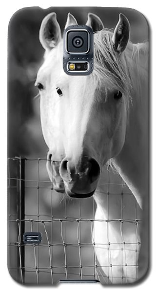 Keeping Their Eyes On Us Galaxy S5 Case by Wes and Dotty Weber