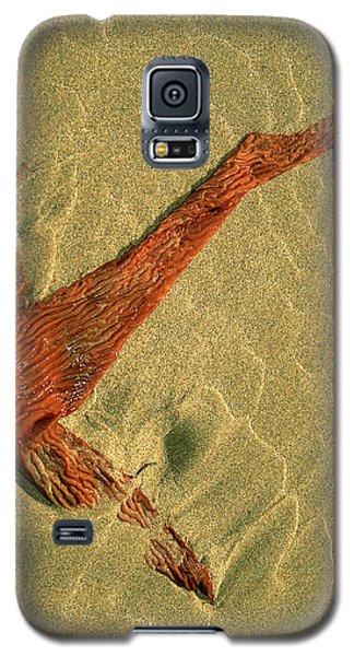 Kelp 2 Galaxy S5 Case by Art Shimamura