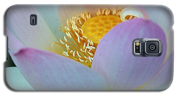 Kenilworth 2015 Number 2 Galaxy S5 Case by John S