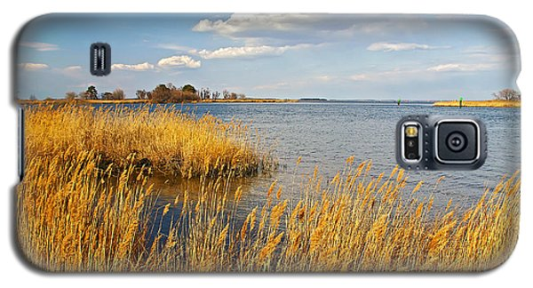 Kent Island Galaxy S5 Case by Brian Wallace