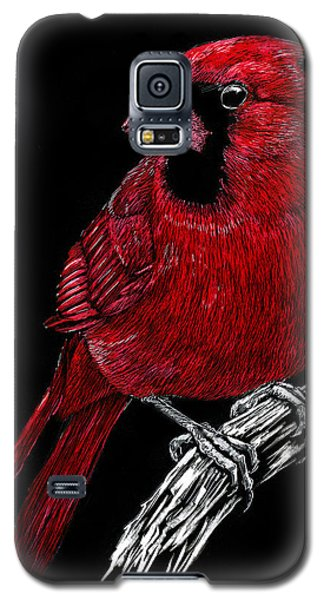 Kentucky Cardinal Galaxy S5 Case