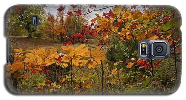 Galaxy S5 Case featuring the photograph Kentucky Fall Colors by Wendell Thompson